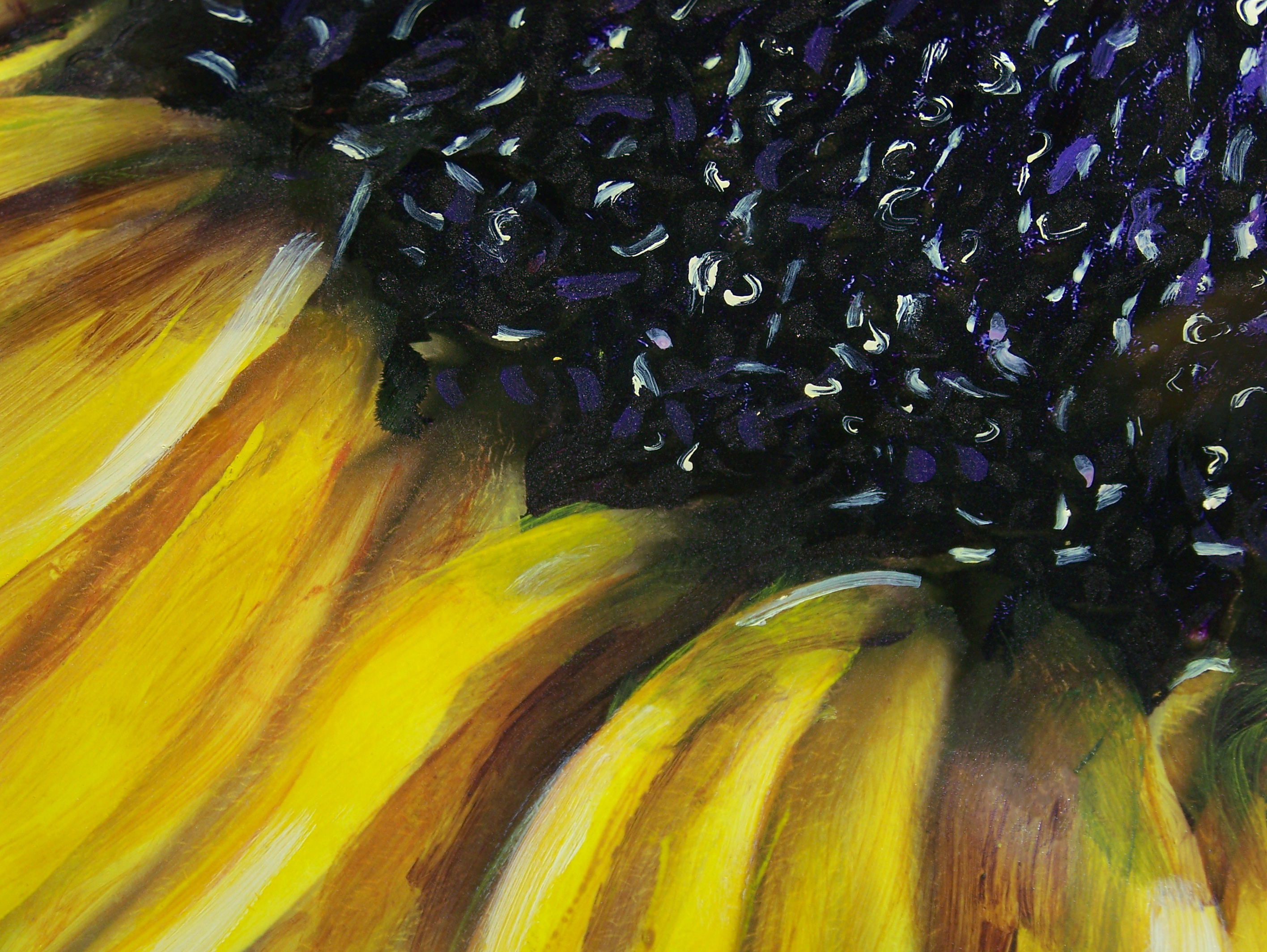 Sunflower_Detail_HighRes